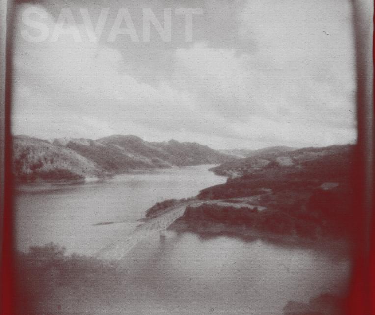 Peter Savant…Kovachevich