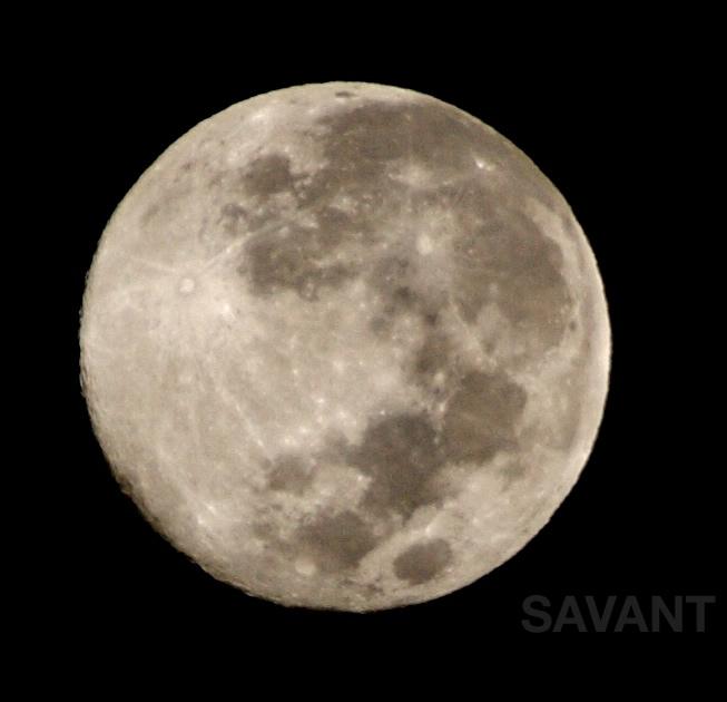 Lunar Daze