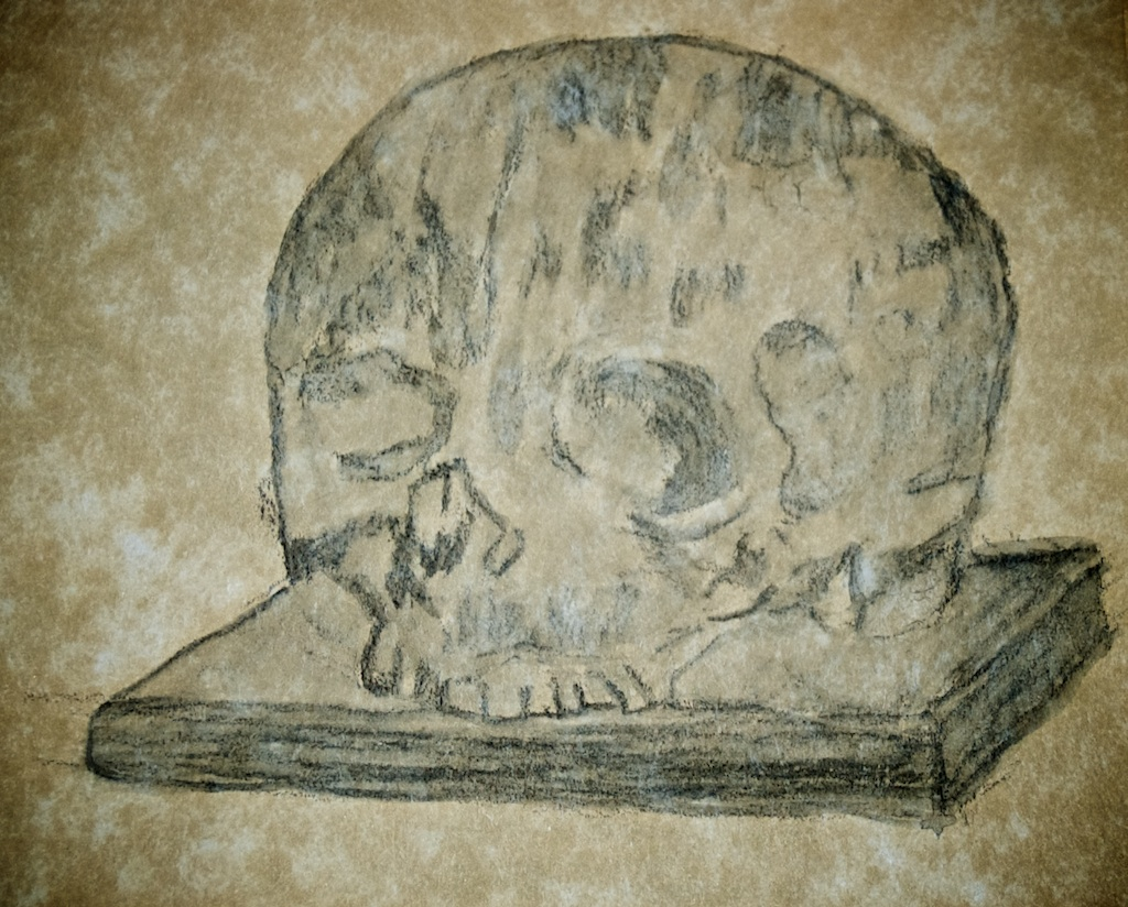 Skull On A Book